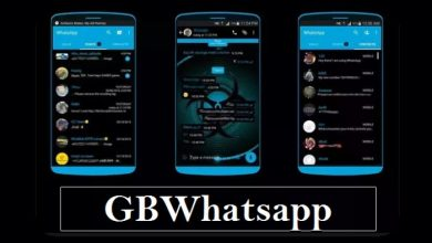 WhatsApp Mod Terbaik Support Tema dan Anti Banned 1