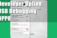 Cara Mengaktifkan Opsi Pengembang dan USB Debugging OPPO 8